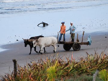 Friendly passers by on the beach show the real local flavor.