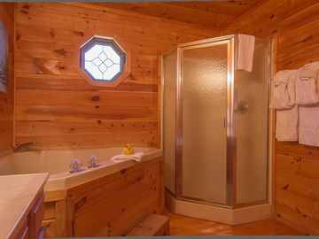 Master bath has indoor Jacuzzi tub