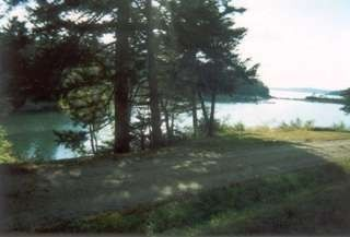Seal Cove house photo - shore access across the road from the house