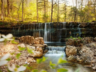 Branson cabin rental - Trail leads to a beautiful waterfall, a great picnic spot.