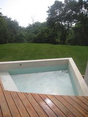 Nosara villa photo - The plunge pool