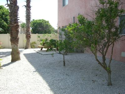 Backyard with Citrus Trees, Shower, Grill, & Table