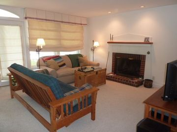 Living Area with working fireplace, TV/DVD player, games, movies