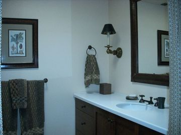 Master Bath with large walk-in shower and separate WC