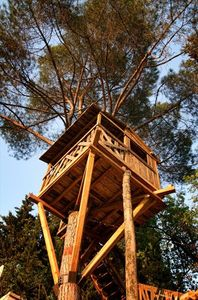Our treehouse