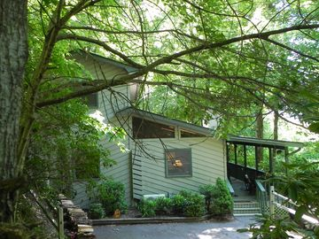 Maggie Valley cabin rental - Welcome to your private retreat in the temperate rain forest of the Smokies.
