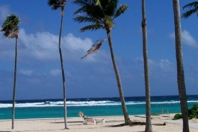 Grand Cayman condo rental - Serenity and the sea