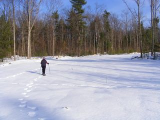 Alton farmhouse photo - Snowshoe or cross country ski the open fields or wooded trails!