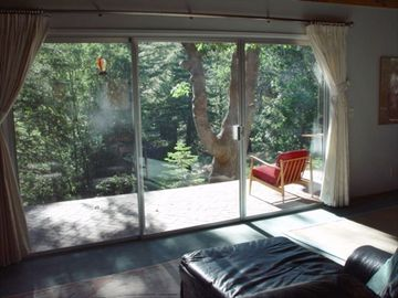 Sliding Windows with Forest View