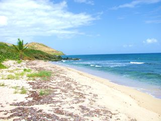 St. Croix condo photo - Long stretch of white sand beach to the West