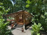 Dream Nature Ecolodge Up To 3 People, Jungle Views, Just Steps To Pristine Beach