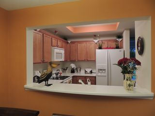 Ruskin townhome photo - Fully equipped kitchen with four new appliances