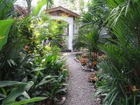 Casa Beauty and the Beach!  2BD, plunge pool, 200 meters to ocean, in rainforest