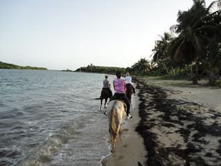 Vieques Island villa photo - Horseback riding at sunset