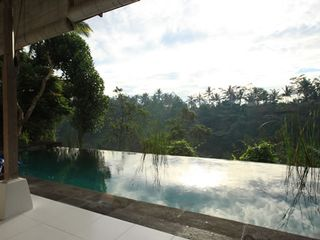 Infinity pool overlooking the valley - Ubud villa vacation rental photo