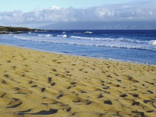 Kapalua villa rental - Where is everyone? It's not unusual to have the beach to yourself.