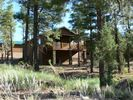 Show Low cabin vacation rental photo