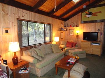 Pine cabin rental - Curl up on the down sofa