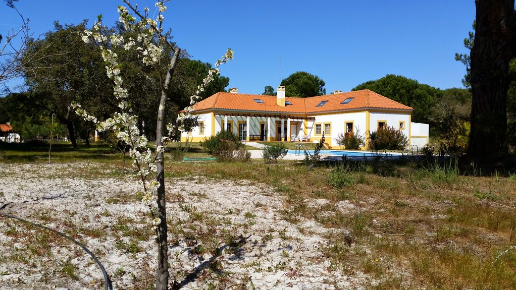 Air-conditioned house, with garden, 450 square meters