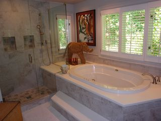 Big Canoe house photo - Master bathroom recently renovated shower and oversized bathtub.
