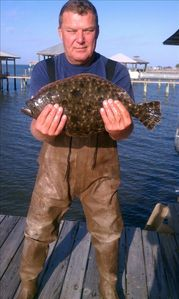 Huge flounder caught on side of pier