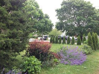 Falmouth cottage photo - Plenty of green space