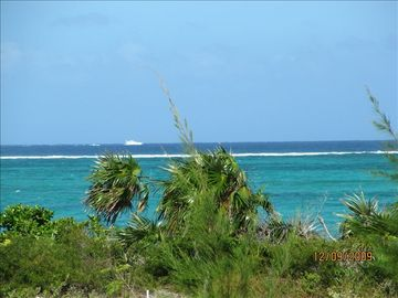 The view of the natural vegetation & turquoise ocean from the front of the Villa