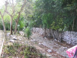 Playa del Carmen condo photo - This is the path that takes you to the closest beach - the Playacar beach.