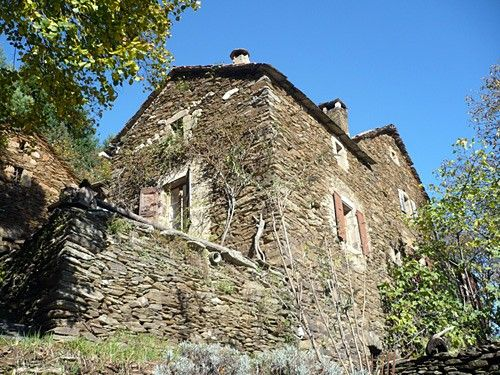 Stone house amid a chestnut forest (50,000-sq.m ground). Suitable for families