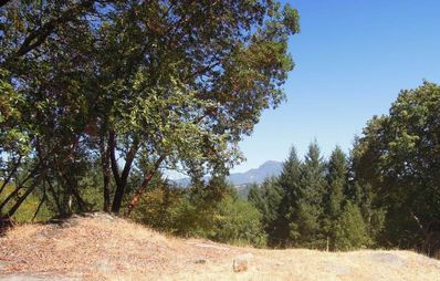 View of Mt. St. Helena
