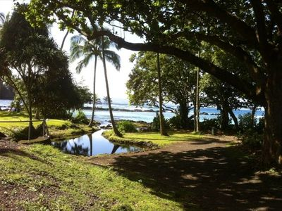 beauty of carlsmith park, right next to the mauna loa shores