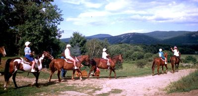 Horseback rides -next door at Farm by the River