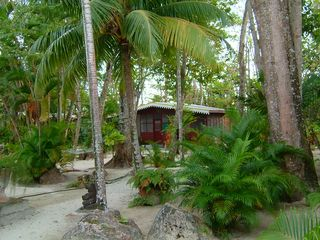 Negril cottage photo - nestled in a beach front garden