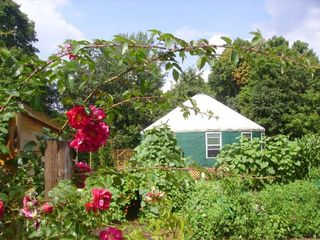 Ithaca cottage photo - Old fashioned roses ring the garden! Only 5 minutes drive to State Parks.