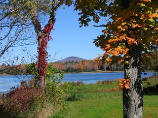 Belmont farmhouse photo - Wonderful lake and foliage views across our meadow.
