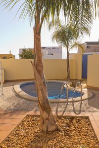 Vila Nova de Cacela house rental - Private swimming pool