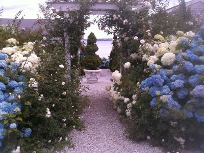 Bristol Sails Cottage Rose Covered Arbor Entrance