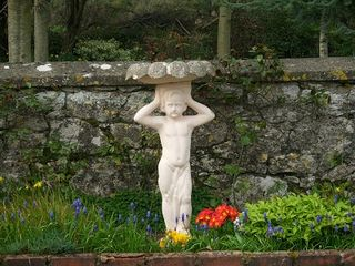 County Limerick cottage photo - Boy in courtyard garden