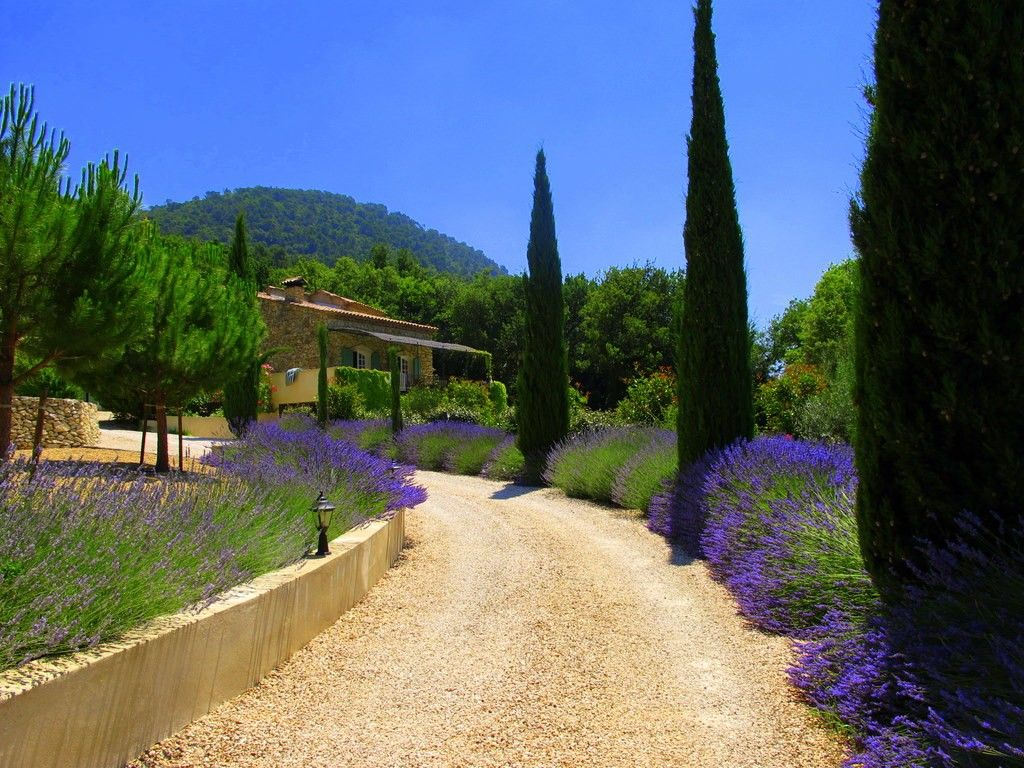 Luxury house, with pool , Séguret, Provence and Cote d