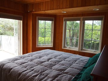 Bedroom 3. King bed. French Doors to terrace overlooking forest.