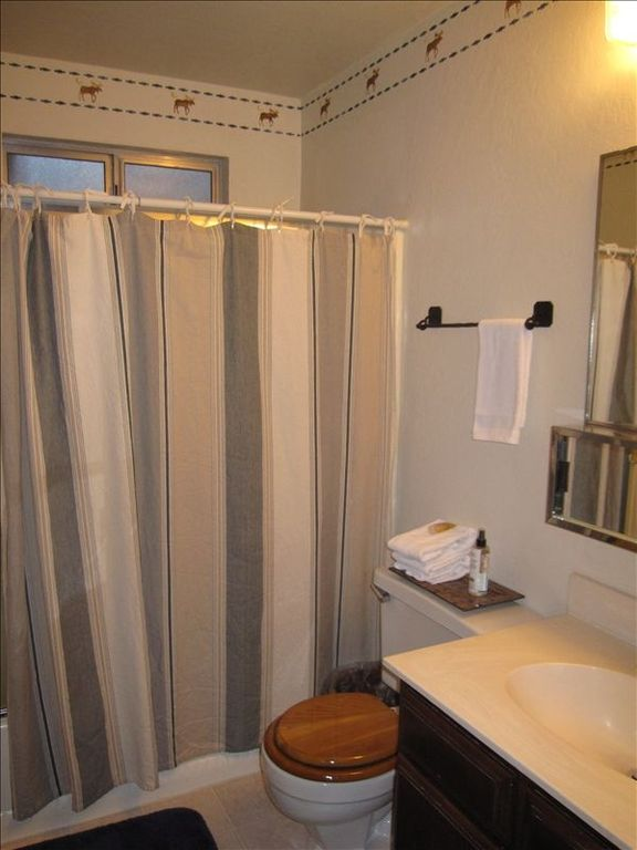 Downstairs clean, cabin-themed full bathroom with ceiling heater (2 of 2 baths)