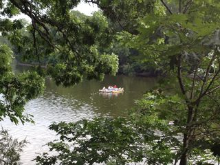 Utica house photo - Canoeing on the scenic Fox River in Sheridan, IL (picture taken by property)