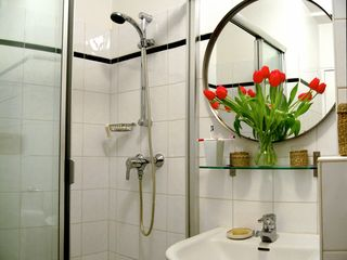 4th Arrondissement Pompidou Le Marais apartment photo - Walk-in shower and plenty of light in the bathroom.