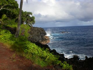 Kapoho house photo - Beautiful coastal drive along the Red Road near Mika Lani.