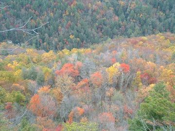 Beech Mountain in the Fall