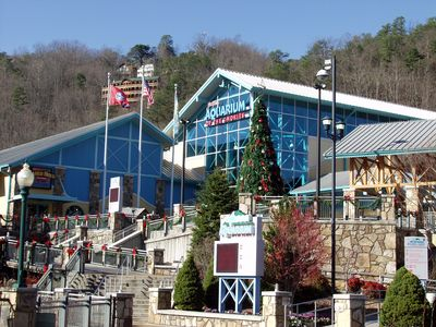 Ripley's Aquarium in downtown Gatlinburg