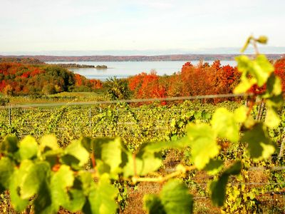 24 Wineries in the local area to explore.