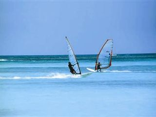 Aruba house photo - World renowned kite surfing and wind surfing thanks to Aruba's famous breezes