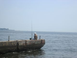 Staten Island house photo - Yes you can fish in New York Bay