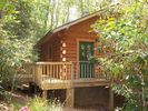 Montreat Cabin Rental Picture